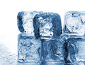 Melting ice cubes Stock Photography