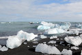 Melting icebergs at the beach ice blocks north sea coast near jokulsarlon lagoon Royalty Free Stock Photos