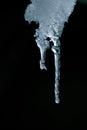 Melting icicle isolated on a black background Stock Photos