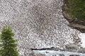 Melting snow in Koednitz Valley, Austria Stock Photography