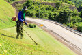 Men mow cutting grass on the mountain Stock Images