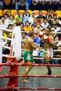 Men's Kick Boxing Action Stock Image