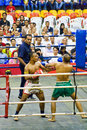Men's Kick Boxing Action Royalty Free Stock Image