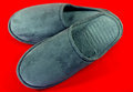 Men's slippers Stock Photography