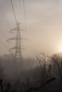 Menacing power line tower in nature intrusive a forest the sun is rising Stock Photo