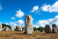 Menhirs alignment. in Carnac, Britain, France Royalty Free Stock Photo