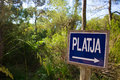 Menorca track blue sign with platja or beach arrow in mediterranean pine forest Stock Photography