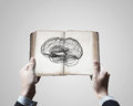 Mental ability close up of male hands holding opened book with brain picture Royalty Free Stock Image