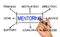 Mentoring concept flowchart Royalty Free Stock Photo