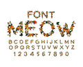 Meow font. Cat alphabet. catlike ABC. letters of Pet. Pets typo