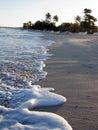 Mer des Caraïbes et ondes dans la plage Image stock