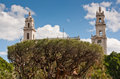 Merida Cathedral with tree Royalty Free Stock Photo