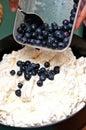 Meringue ice cream dessert Royalty Free Stock Photo