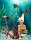 Mermaid  Stock Photography