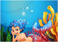 A mermaid near the coral reefs illustration of on white background Royalty Free Stock Photos