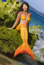 Mermaid on sea background tropical Stock Photo