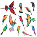 Meropidae birds set of colorful low poly design on white background southern northern carmine bee eater blue tailed bee Stock Photo