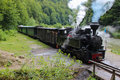 Mocanita Steam Train Royalty Free Stock Photo