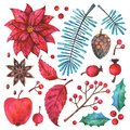 Merry Christmas and Happy New Year watercolor floral elements set