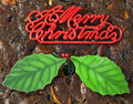 Merry christmas wishes decorating a fruit cake Royalty Free Stock Images