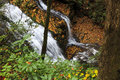 Merry falls cascading water in north carolina near the dupont state forest and brevard Royalty Free Stock Photography