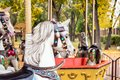 A merry-round-go Carousel Horse close up in Autumn park. Old woo Royalty Free Stock Photo