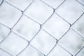 Mesh netting covered with frost Royalty Free Stock Photo