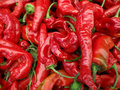 Mesilla: Cayenne-type chili Royalty Free Stock Photo