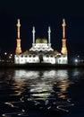 A mesquita em terra late na noite Fotografia de Stock Royalty Free