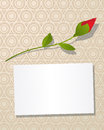 Message card Stock Photo
