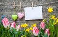 Message and hearts on the clothesline with spring flowers against wooden background Royalty Free Stock Photography