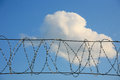 Metal barbed wire Stock Images