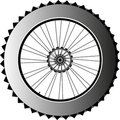 Metal bike wheel with tire and spokes. vector Stock Photography