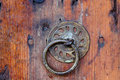 Metal entrance knocker on old wooden textured door Stock Image