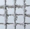 Metal fence covered with frost Royalty Free Stock Photo