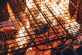 Metal net over fire burning coal ember wood in barbecue grill at Royalty Free Stock Photo