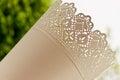 Metal planter lace pattern detail Stock Image