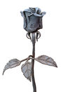Metal rose Royalty Free Stock Photo