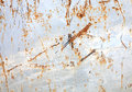 Metal rusty surface Royalty Free Stock Photo