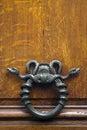 Metal snake door knocker