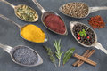 Metal spoons with various ground spices on slate background Royalty Free Stock Photo