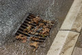 Metal storm drain cover after street cleaning on sunny day Royalty Free Stock Images