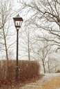 Metal street lamp in foggy park Stock Image