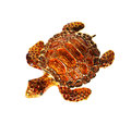 Metal tortoise with crystals Stock Image