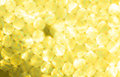 Metallic Gold yellow Lights Festive background. Abstract Christmas twinkled bright background with bokeh unfocused silver lights Royalty Free Stock Photo
