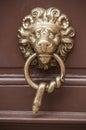 Metallic Lion shaped handle on wooden door