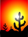 Mexican cactus landscape Stock Photo
