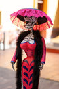 Mexican Catrina IV Stock Photography