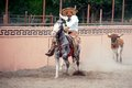 Mexican charros horseman being chased by a bull, TX, US Royalty Free Stock Photo