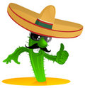 Mexican cool cactus Stock Photos